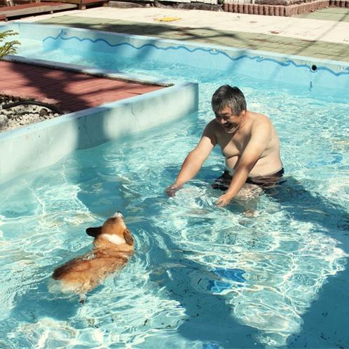 *わんこ用プール/贅沢にも温泉をつかった夏期限定のプール。わんことの夏の思い出に☆