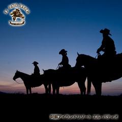 月夜の乗馬体験☆スターライト トレッキングプラン