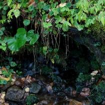 外のイメージ川
