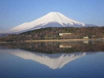 春・逆さ富士