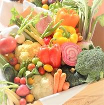 【朝食】イメージ 道産にこだわった新鮮野菜もたっぷり食べられる朝食