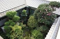 Garden 町屋の裏にある坪庭