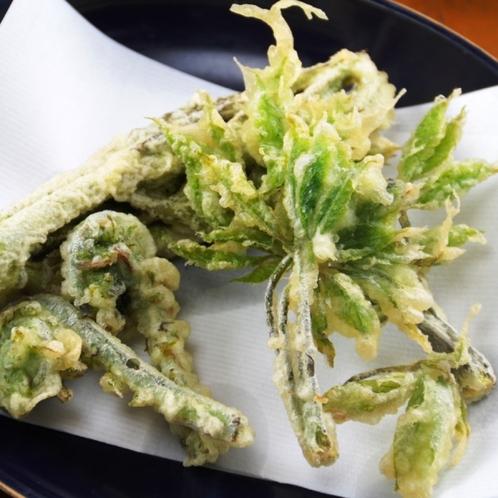 夕食単品_山菜天ぷら