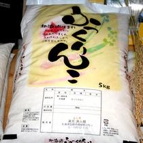 自作米のふっくりんこ