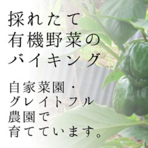 *当ホテルが有機野菜を育てている「グレイトフル農園」