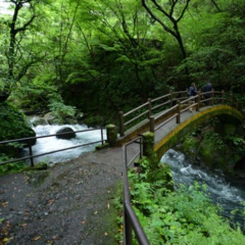 <天安河原>天安河原までの道のりにある太鼓橋。パワースポットとして有名です。