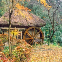 <高千穂峡遊歩道:ゆっくり歩いて30分>見所:水車小屋。紅葉の時期の名スポット。