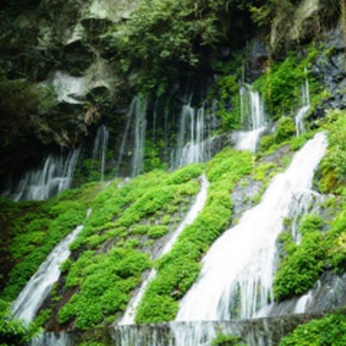<高千穂峡遊歩道:ゆっくり歩いて30分>見所:玉垂れの滝