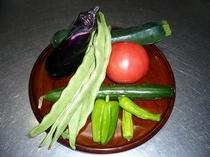 自家製有機野菜