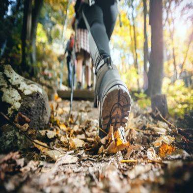 【平日限定】☆初心者〜上級者まで 登山&トレッキング好きにおすすめプラン
