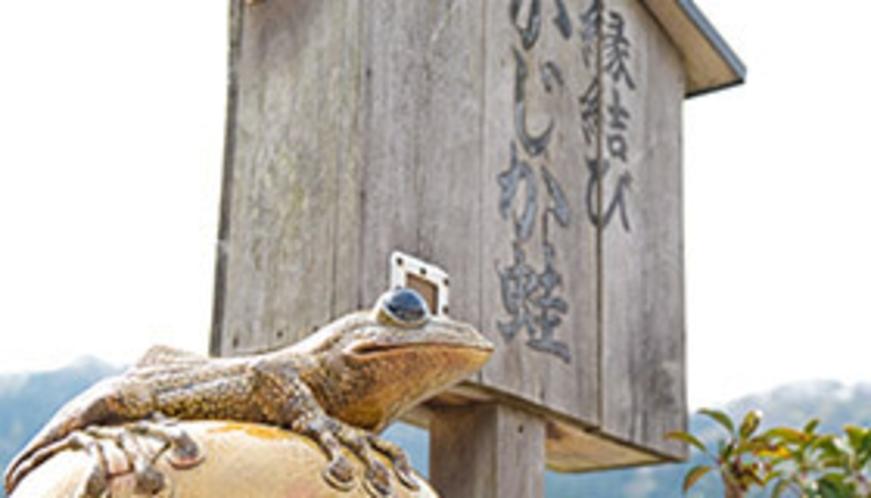 縁結び かじか蛙