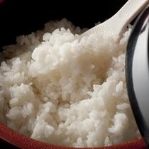 【コシヒカリ】ふっくら、つやつやのご飯