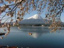 北浜荘から見える富士山です。