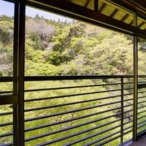 温かい雰囲気の木造造りのお部屋でのんびりとお寛ぎ下さい。