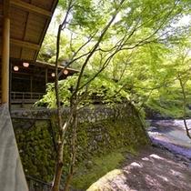 【夏】高雄の納涼川床は市内よりも3〜5度低いと言われております。