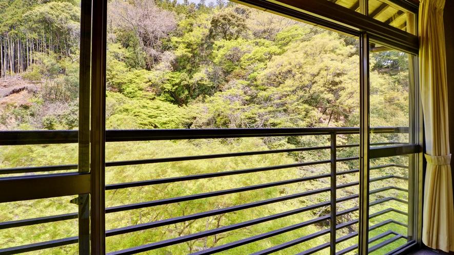 *【窓から(グリーンシーズン)】色鮮やかな景色で心も身体もリフレッシュ!