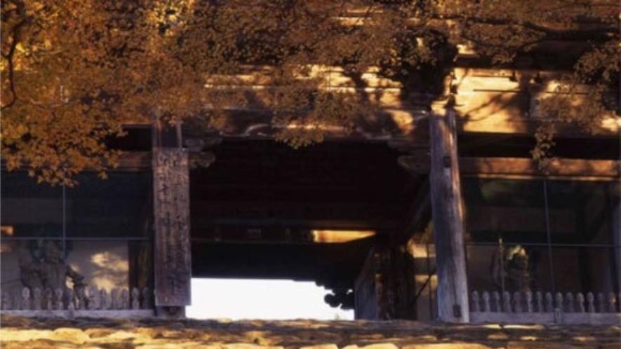 【秋(11月初旬~11月下旬)】神護寺(徒歩1