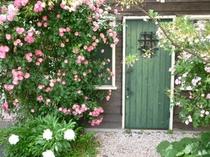 ゲストハウス月家の入口