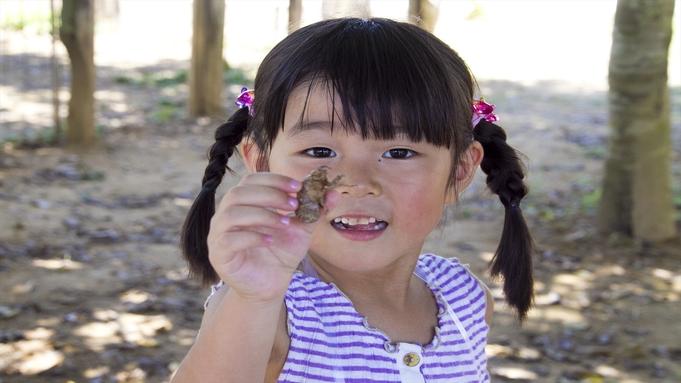 【WEB割】沖縄の自然を実感!コテージ個室ステイ【素泊り】
