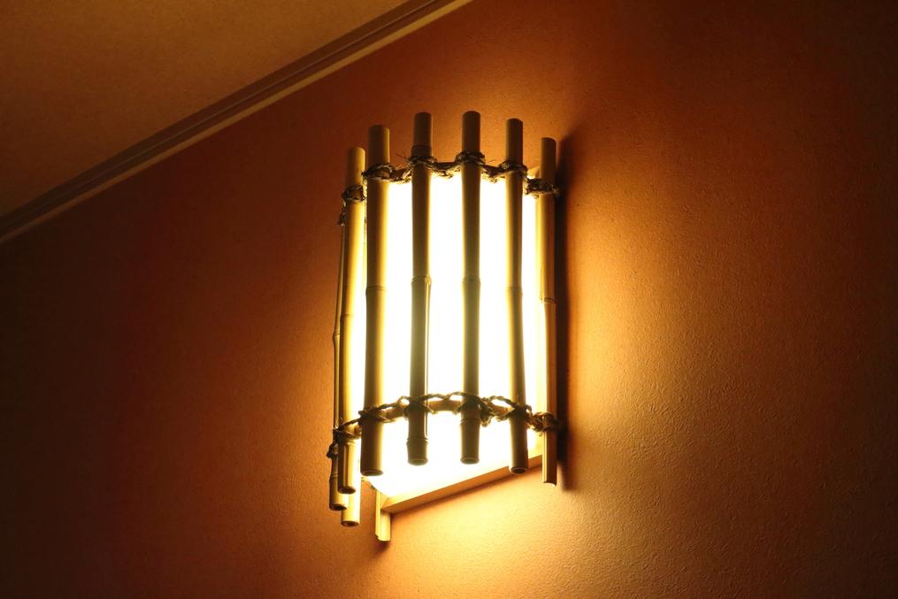 客室 照明