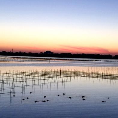 【夕食のみ】朝のんびりと♪全室レイクビュー&素材宝庫の浜名湖 の旬和会席を堪能☆