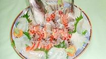 *夕食(一例)真鯛姿造り(約800g)&車海老踊り。※写真は6人前です。