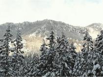 窓から見える瀧山