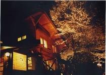 外観 (夜桜)