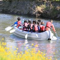 【松崎観光/春】花見船・両脇にソメイヨシノ、河原に菜の花が咲き誇る絶景!