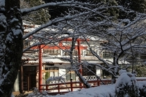冬の景色4