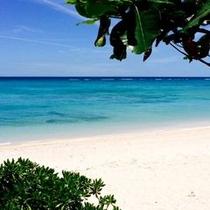 夏色ビーチ