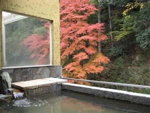秋の露天風呂です。