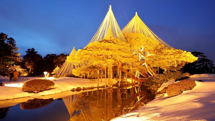 冬の兼六園は美しくライトアップされます。