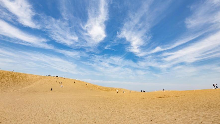 鳥取砂丘(ホテルから車で約90分)