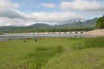 タウシュベツ川橋梁 2011.06.25