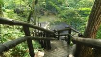 【混浴露天風呂】までは約40段の階段。