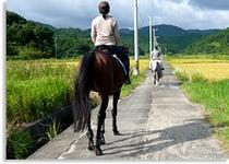 乗馬の風景