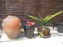 一休のところどころから沖縄の香りを感じて下さい♪