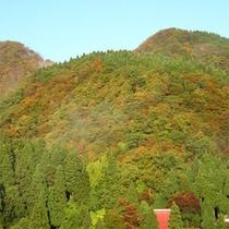 近隣の山々