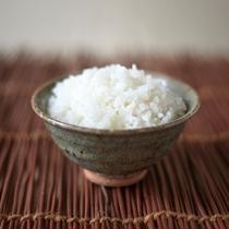 【こだわりの白ご飯】減農薬・有機質100%肥料を活用した地元産のお米です
