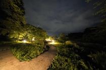 「奥ノ院」散策の道