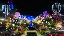 [ハウステンボス]バラ祭り(5月頃)