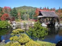庭園の水車