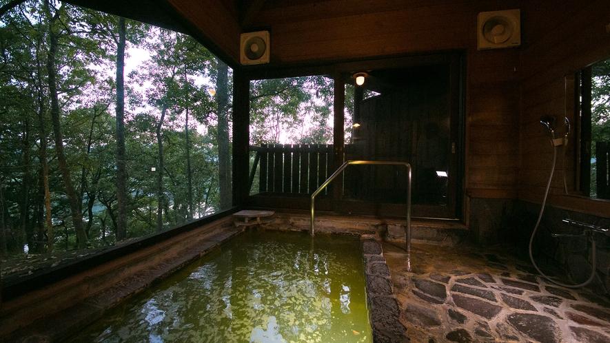 【貸切風呂】日本一の炭酸泉を心ゆくまで。