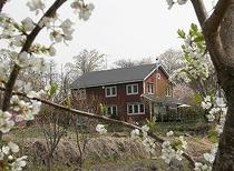 桜とヒュッテ