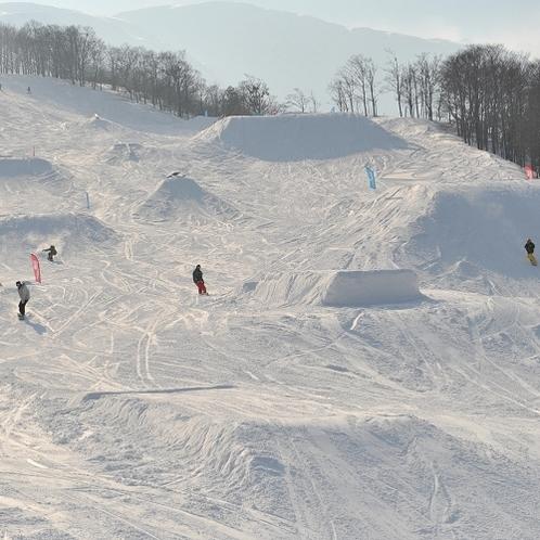 ■多彩なコースを取り揃える国内最大級のスキー場