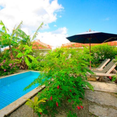 *【芭蕉】各ヴィラに設置されているプライベートプール。南国ムードがたっぷり。