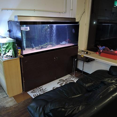 *【マリンブルー水族館】様々な海水魚・淡水魚がみなさまをお待ちしています。お子様にも大人気♪