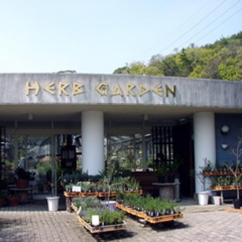 小豆島オリーブ公園(ハーブガーデン)