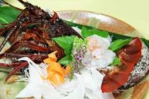 【ご夕食 一例】・・・豪華海鮮三昧プラン ≪伊勢海老お造り≫